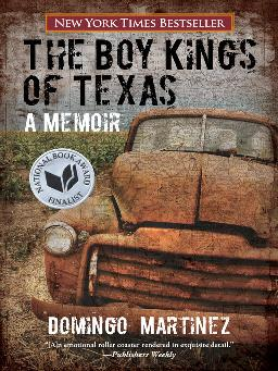 Catalogue record for The boy kings of Texas