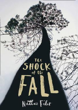 Catalogue link for The shock of the fall
