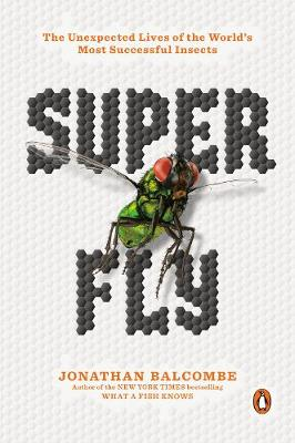 Catalogue record for Super fly