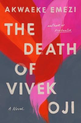 Catalogue record for The death of Vivek Oji
