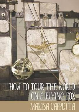 Catalogue link for How to tour th world on a flying flox