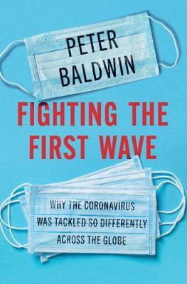 Catalogue record for Fighting the first wave
