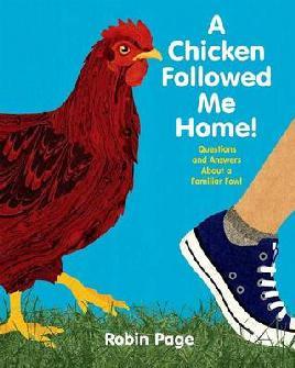 A Chicken Followed Me Home!