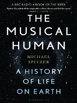 The Musical Human