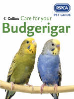 Cover of Care for Your Budgerigar