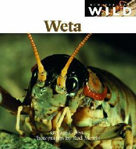 Weta Book Cover