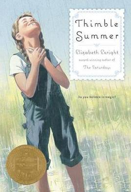Book cover: Thimble summer