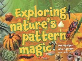 Cover of Exploring nature's pattern magic