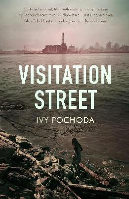 Cover of Visitation Street