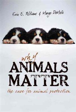 Cover of Why Animals Matter