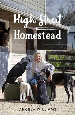 Catalogue link for High Street to homestead