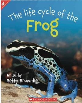 Book Cover of The Life Cycle of the Frog