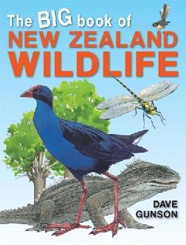 Book cover of The big book of New Zealand wildlife