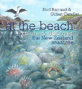 Cover of At The Beach