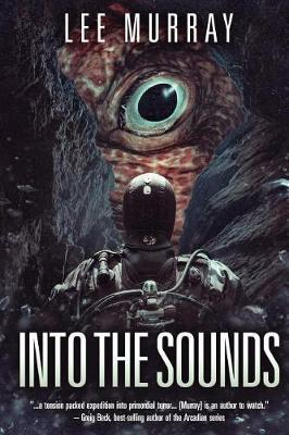Catalogue link for Into the sounds