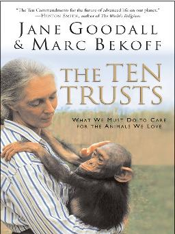 Cover of The Ten Trusts